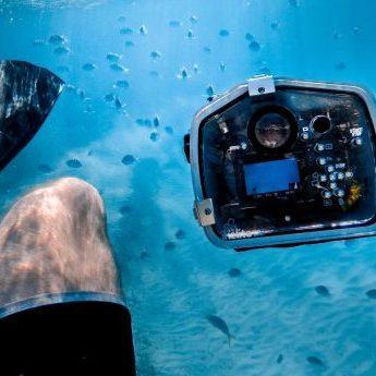 underwater-photography-camera-settings-1-450x345