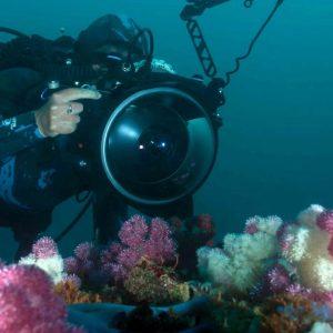 Underwater Photography Training Internship Program2